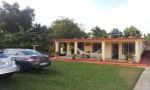 Casa Papo & Niulvys