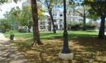Frente al parque